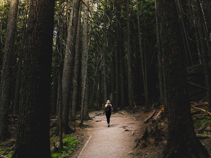 what is forest bathing